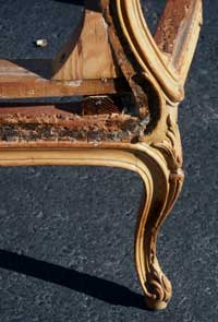 Louie XV Bergerie Chair After Restoration Repaired Leg Left Side View