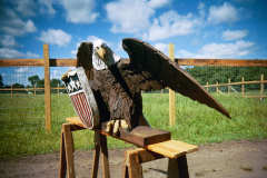 Artisans of the Valley feature Chainsaw Carving by Bob Eigenrauch - Eagle with Shield Right