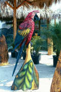 Artisans of the Valley feature Chainsaw Carving by Bob Eigenrauch - Perched Parot