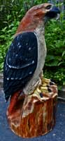 Artisans of the Valley feature Chainsaw Carving by Bob Eigenrauch - Red Tail Hawk