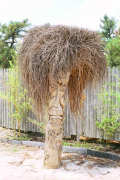 Artisans of the Valley feature Chainsaw Carving by Bob Eigenrauch - Tiki with Grass Hair